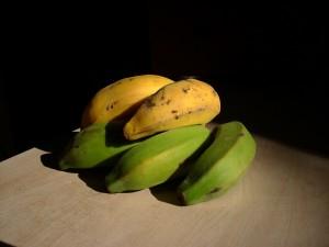 Green and gold banana bunch