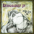 17. Dinosaur Jr. - You're Living All Over Me