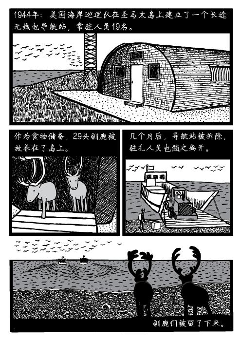 人口可持续性。 阿拉斯加。1944年:美国海岸巡逻队在圣马太岛上建立了一个长途 无线电导航站,常驻人员19名。作为食物储备,29头驯鹿被 放养在了岛上。几个月后,导航站被拆除, 驻扎人员也随之离开。驯鹿们被留了下来。