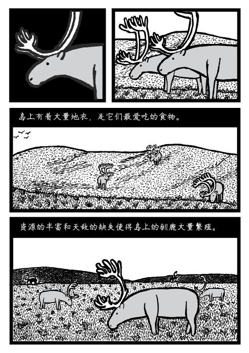 人口可持续性。 岛上有着大量地衣,是它们最爱吃的食物。资源的丰富和天敌的缺失使得岛上的驯鹿大量繁殖。