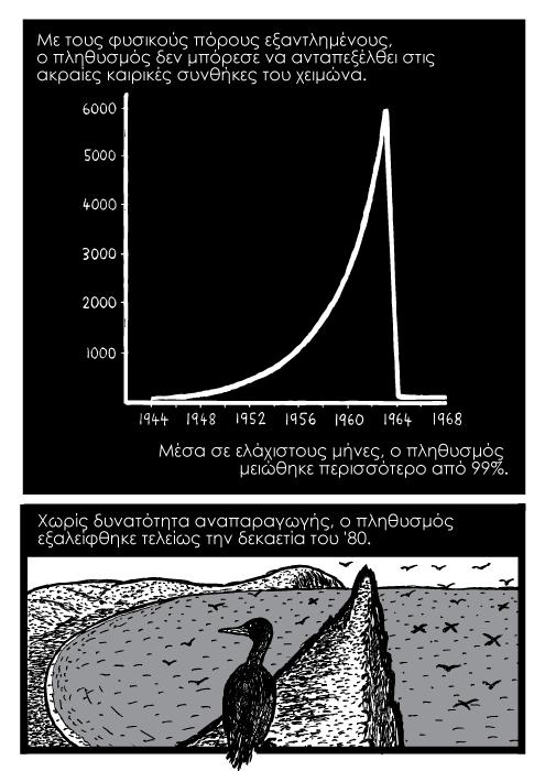 Με τους φυσικούς πόρους εξαντλημένους, ο πληθυσμός δεν μπόρεσε να ανταπεξέλθει στις ακραίες καιρικές συνθήκες του χειμώνα. Μέσα σε ελάχιστους μήνες, ο πληθυσμός μειώθηκε περισσότερο από 99%. Χωρίς δυνατότητα αναπαραγωγής, ο πληθυσμός εξαλείφθηκε τελείως την δεκαετία του '80.
