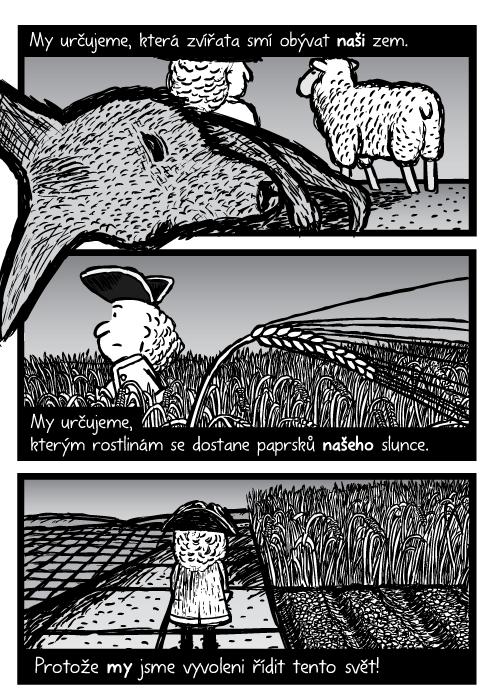 Mrtvý klokan farmář ovce komiks. Muž kráčející přes pšeničné pole. Řádky cukrové třtiny, pole sřádky. My určujeme, která zvířata smí obývat naši zem. My určujeme, kterým rostlinám se dostane paprsků našeho slunce. Protože my jsme vyvoleni řídit tento svět!
