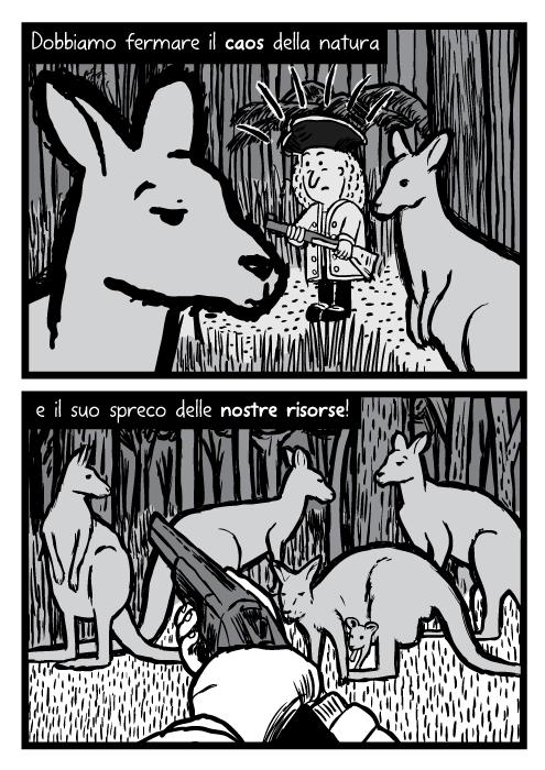 Disegno di canguri nella radura della foresta. Vignetta di un esploratore che mira con il fucile. Dobbiamo fermare il caos della natura e il suo spreco delle nostre risorse!