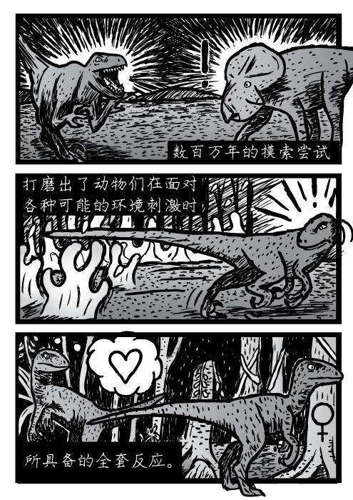 速龙,极度空间数百万年的摸索尝试 打磨出了动物们在面对 各种可能的环境刺激时 所具备的全套反应。