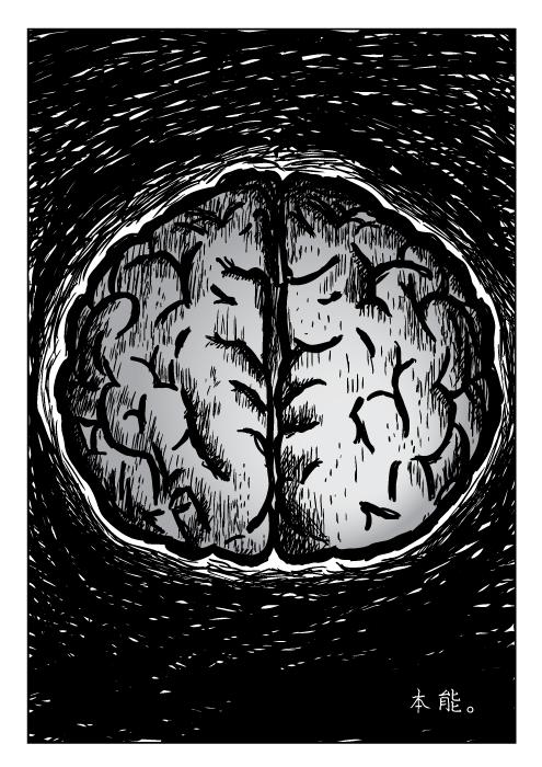 大脑天性行为