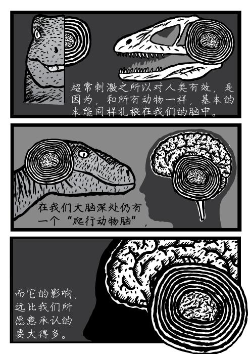 """超常刺激,速龙,极度空间,大脑,超常刺激之所以对人类有效,是 因为,和所有动物一样,基本的 本能同样扎根在我们的脑中。在我们大脑深处仍有 一个""""爬行动物脑"""", 而它的影响, 远比我们所 愿意承认的 要大得多。"""