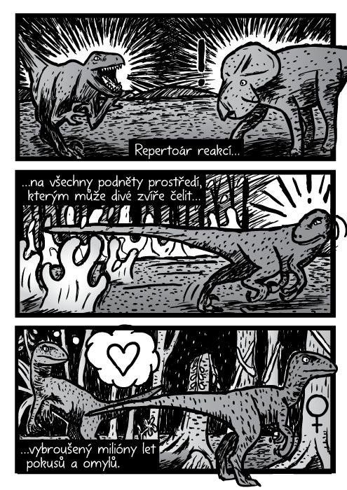 Velociraptoři dinosauři kresba komiks. Repertoár reakcí na všechny podněty prostředí, kterým může divé zvíře čelit, vybroušený milióny let pokusů a omylů.