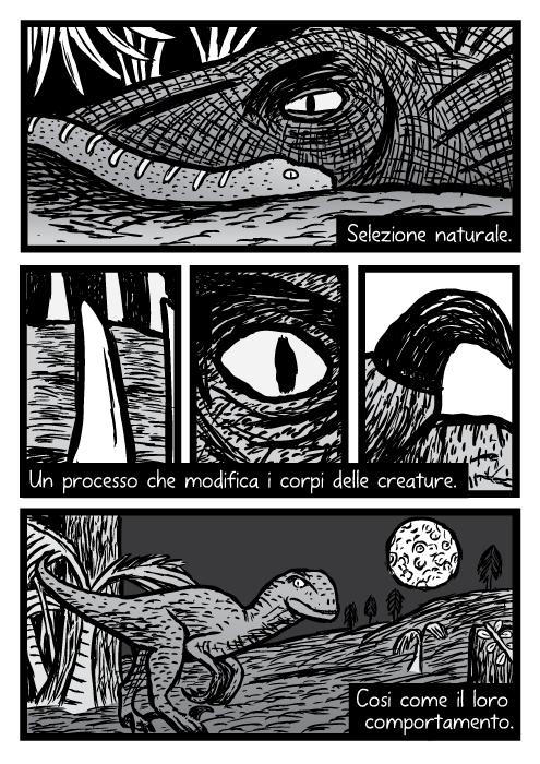 Velociraptor raptor dinosauro dente occhio artiglio vignetta disegnata. Selezione naturale. Un processo che modifica i corpi delle creature. Cosi come il loro comportamento.