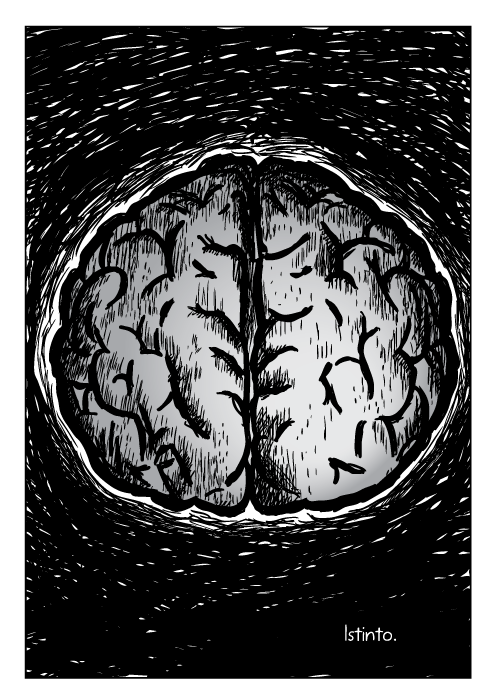 Disegno di un cervello. Istinto.