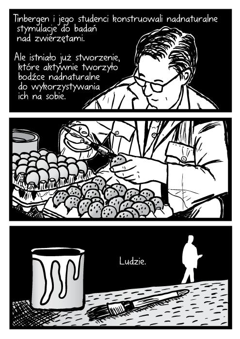 Tinbergen i jego studenci konstruowali nadnaturalne stymulacje do badań nad zwierzętami. Ale istniało już stworzenie, które aktywnie tworzyło bodźce nadnaturalne do wykorzystywania ich na sobie. Ludzie. Niko Tinbergen mężczyzna naukowiec w okularach maluje jajka na ławce w pracy rysunek.