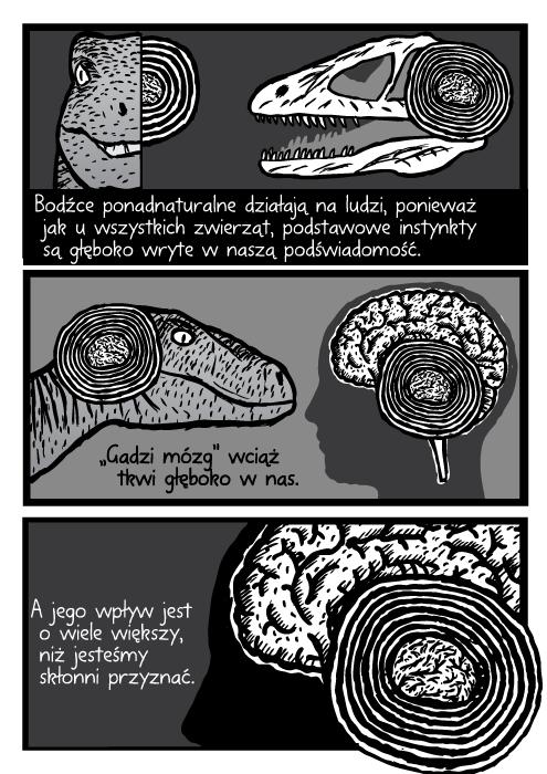 """Bodźce ponadnaturalne działają na ludzi, ponieważ jak u wszystkich zwierząt, podstawowe instynkty są głęboko wryte w naszą podświadomość. """"Gadzi mózg"""" wciąż tkwi głęboko w nas. A jego wpływ jest o wiele większy, niż jesteśmy skłonni przyznać."""