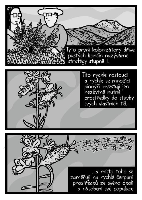 Plevel rozfoukávat semena kresba. Rostlina semena komiks. Tyto první kolonizátory dříve pustých končin nazýváme stratégy stupně I. Tito rychle rostoucí a rychle se množící pionýři investují jen nezbytně nutné prostředky do stavby svých vlastních těl…a místo toho se zaměřují na rychlé čerpání prostředků ze svého okolí a násobení své populace.