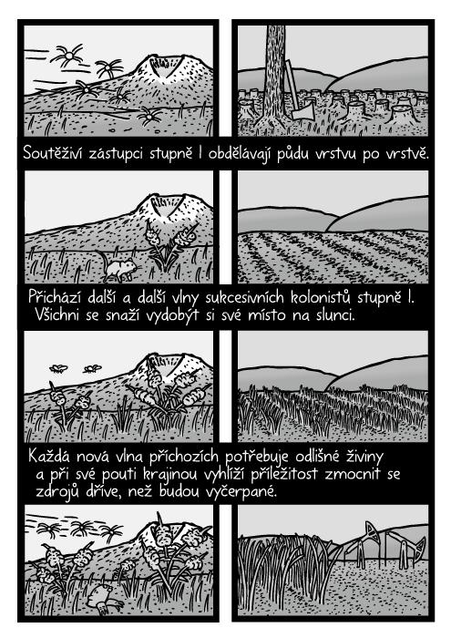 Plevel rostoucí v poli komiks. Zemědělství sklizeň sukcese kresba. Soutěživí zástupci stupně I obdělávají půdu vrstvu po vrstvě. Přichází další a další vlny sukcesivních kolonistů stupně I. Všichni se snaží vydobýt si své místo na slunci. Každá nová vlna příchozích potřebuje odlišné živiny a při své pouti krajinou vyhlíží příležitost zmocnit se zdrojů dříve, než budou vyčerpané.