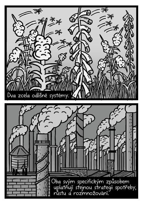 Plevel semínka komiks. Létající semínka vrbovka kresba. Průmysl tovární komíny kouř. Dva zcela odlišné systémy. Oba svým specifickým způsobem uplatňují stejnou strategii spotřeby, růstu a rozmnožování.