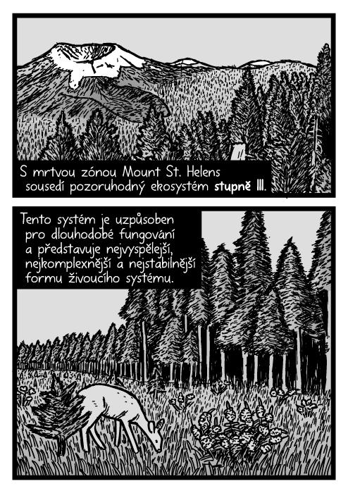 Mount St. Helens vzrostlé stromy kresba. Jedle posed borovice komiks. S mrtvou zónou Mount St. Helens sousedí pozoruhodný ekosystém stupně III. Tento systém je uzpůsoben pro dlouhodobé fungování a představuje nejvyspělejší, nejkomplexnější a nejstabilnější formu živoucího systému.