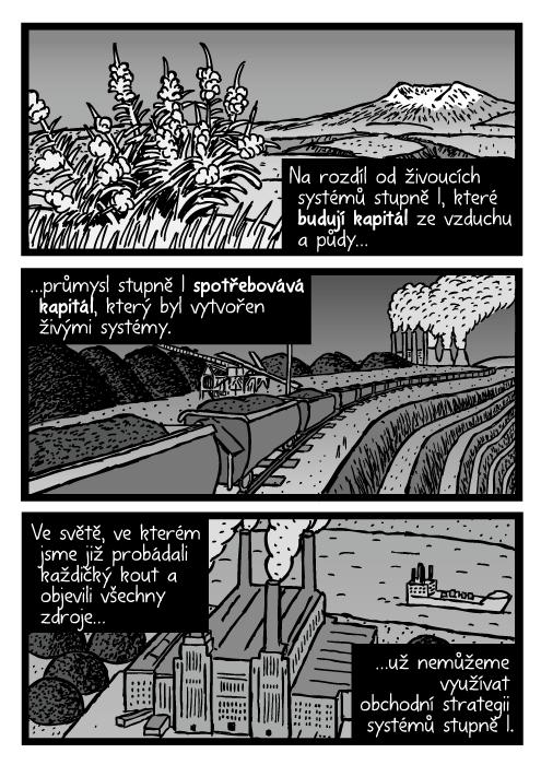 Mount St. Helens plevel. Parní lokomotiva komiks. Uhelná elektrárna kresba. Na rozdíl od živoucích systémů stupně I, které budují kapitál ze vzduchu a půdy…průmysl stupně I spotřebovává kapitál, který byl vytvořen živými systémy. Ve světě, ve kterém jsme již probádali každičký kout a objevili všechny zdroje…už nemůžeme využívat obchodní strategii systémů stupně I.
