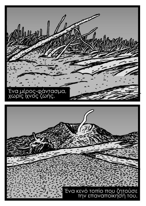 Καρτούν για Σεντ Έλεν. Υπολλείμματα πεσμένων δέντρων σε ηφαιστειακή στάχτη, σκίτσο ηφαιστειακή στάχτη, νεκρή ζώνη από έκρηξη ηφαιστείου. Ένα μέρος-φάντασμα, χωρίς ίχνος ζωής. Ένα κενό τοπίο που ζητούσε την επαναποίκησή του.