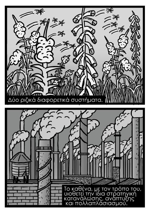 Σπόροι ζιζανίων κόμικ καρτούν, κόμικ βιομηχανικών φουγάρων. Δύο ριζικά διαφορετικά συστήματα. Το καθένα, με τον τρόπο του, υιοθετεί την ίδια στρατηγική κατανάλωσης, ανάπτυξης και πολλαπλασιασμού.