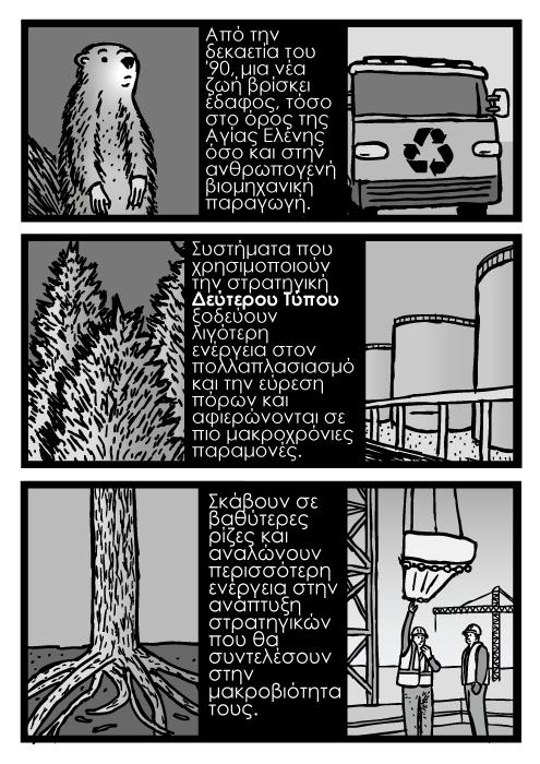 Δέντρα ρίζες δέντρων κόμικ καρτούν. Βιομηχανία κατασκευών. Από την δεκαετία του '90, μια νέα ζωή βρίσκει έδαφος, τόσο στο όρος της Αγίας Ελένης όσο και στην ανθρωπογενή βιομηχανική παραγωγή. Συστήματα που χρησιμοποιούν την στρατηγική Δεύτερου Τύπου ξοδεύουν λιγότερη ενέργεια στον πολλαπλασιασμό και την εύρεση πόρων και αφιερώνονται σε πιο μακροχρόνιες παραμονές. Σκάβουν σε βαθύτερες ρίζες και αναλώνουν περισσότερη ενέργεια στην ανάπτυξη στρατηγικών που θα συντελέσουν στην μακροβιότητα τους.