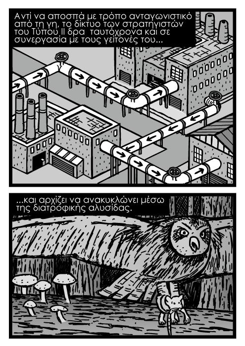 Ισομετρικοί εργοστασιακοί σωλήνες ζωγραφιά καρτούν κόμικς, κουκουβάγια που πιάνει ποντίκι καρτούν. Αντί να αποσπά με τρόπο ανταγωνιστικό από τη γη, το δίκτυο των στρατηγιστών του Τύπου ΙΙ δρα ταυτόχρονα και σε συνεργασία με τους γείτονές του και αρχίζει να ανακυκλώνει μέσω της διατροφικής αλυσίδας.