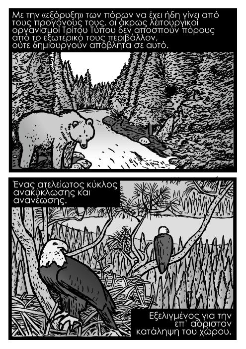 Αρκούδα του βουνού ρέμα βουνού καρτούν ζωγραφιά σκίτσο, άγριος αετός κόμικς, αετοφωλιά ζωγραφιά. Με την «εξόρυξη» των πόρων να έχει ήδη γίνει από τους προγόνους τους, οι άκρως λειτουργικοί οργανισμοί Τρίτου Τύπου δεν αποσπούν πόρους από το εξωτερικό τους περιβάλλον, ούτε δημιουργούν απόβλητα σε αυτό. Ένας ατελείωτος κύκλος ανακύκλωσης και ανανέωσης. Εξελιγμένος για την επ' αόριστον κατάληψη του χώρου.