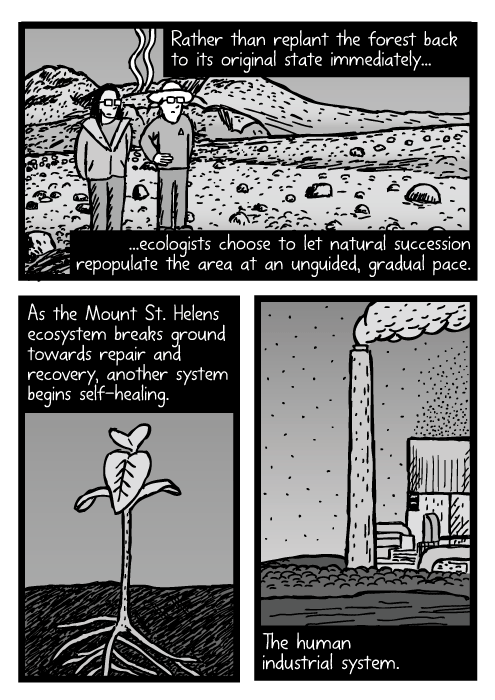 Scientists at Mount St Helens dead zone cartoon. Weed sprout drawing. Factory smokestack comic strip. Rather than replant the forest back to its original state immediately...ecologists choose to let natural succession repopulate the area at an unguided, gradual pace. As the Mount St. Helens ecosystem breaks ground towards repair and recovery, another system begins self-healing. The human industrial system.