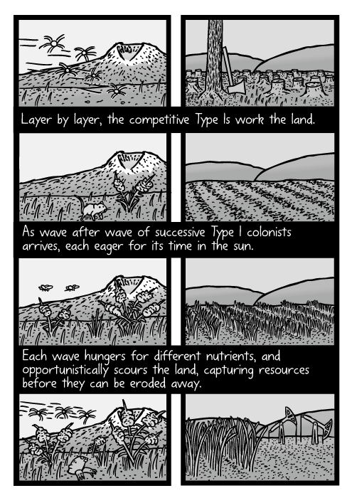 Weeds growing in field cartoon. Agriculture crop succession drawing. Layer by layer, the competitive Type Is work the land. As wave after wave of successive Type I colonists arrives, each eager for its time in the sun. Each wave hungers for different nutrients, and opportunistically scours the land, capturing resources before they can be eroded away.