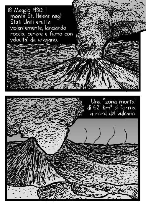 """Disegno del monte Helens che erutta. Fumetto del vulcano. Vignetta dell'eruzione vulcanica. 18 Maggio 1980: il monte St. Helens negli Stati Uniti erutta violentemente, lanciando roccia, cenere e fumo con velocita' da uragano. Una """"zona morta"""" di 621 km² si forma a nord del vulcano."""