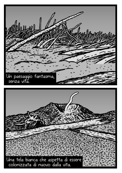 Disegno del monte St. Helens. Vignetta con tronchi nella cenere vulcanica. Area dell'esplosione. Un paesaggio fantasma, senza vita. Una tela bianca che aspetta di essere colonizzata di nuovo dalla vita.