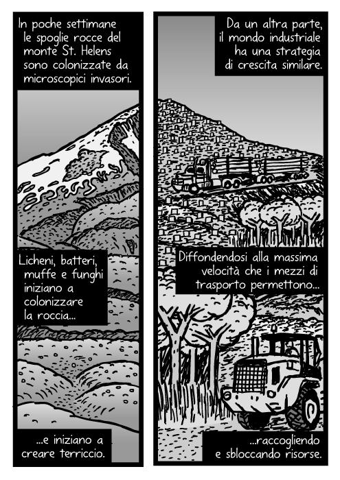 Vignetta del monte St. Helens. Disegno di tronchi di albero. In settimane le spoglie rocce del monte St. Helens sono colonizzate da microscopici invasori. Licheni, batteri, muffe e funghi iniziano a colonizzare la roccia e iniziano a creare terriccio. Da un altra parte, il mondo industriale ha una strategia di crescita similare. Diffondendosi alla massima velocità che i mezzi di trasporto permettono raccogliendo e sbloccando risorse.