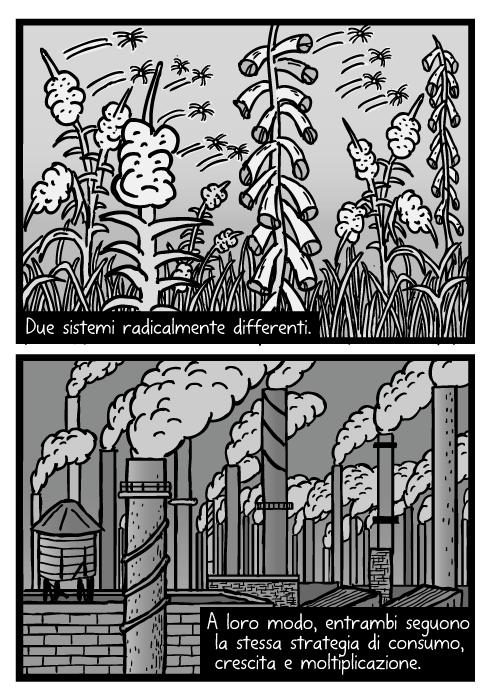 Disegno di seme di pianta. Vignetta di soffione. Fumi industriali. Due sistemi radicalmente differenti. A loro modo, entrambi seguono la stessa strategia di consumo, crescita e moltiplicazione.