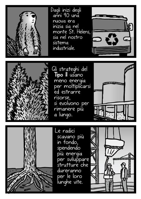 Vignetta di costruzioni industriali. Dagli inizi degli anni 90 una nuova era inizia sia nel monte St. Helens, sia nel nostro sistema industriale. Gli strateghi del Tipo II usano meno energia per moltiplicarsi ed estrarre risorse, si evolvono per rimanere più a lungo. Le radici scavano più in fondo, spendendo più energia per sviluppare strutture che ureranno per le loro lunghe vite. Disegno di alberi, radici.