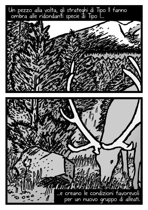 Vignetta di una giovane foresta di pini. Disegno di un alce che mangia erba. Un pezzo alla volta, gli strateghi di Tipo II fanno ombra alle ridondanti specie di Tipo I e creano le condizioni favorevoli per un nuovo gruppo di alleati.