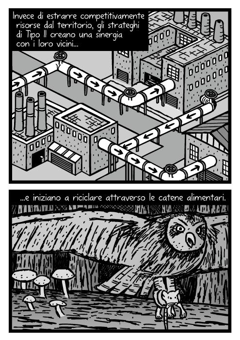 Disegno di conduttore industriali isometriche. Vignetta di un gufo che prende un topo. Invece di estrarre competitivamente risorse dal territorio, gli strateghi di Tipo II creano una sinergia con i loro vicini e iniziano a riciclare attraverso le catene alimentari.