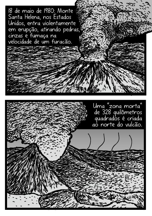 """Desenho da erupção do Monte Santa Helena. Cartum de Vulcão. Quadrinho de erupção de vulcão. 18 de maio de 1980: Monte Santa Helena, nos Estados Unidos, entra violentamente em erupção, atirando pedras, cinzas e fumaça na velocidade de um furacão. Uma """"zona morta"""" de 328 quilômetros quadrados é criada ao norte do vulcão."""