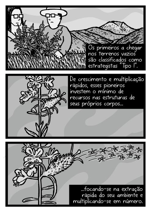 """Desenho ervas daninhas soprando sementes. Cartum ervas daninhas. Os primeiros a chegarem nos terrenos vazios são classificados como estrategistas """"Tipo I"""". De crescimento e multiplicação rápidos, esses pioneiros investem o mínimo de recursos nas estruturas de seus próprios corpos...focando-se na extração rápida do seu ambiente e multiplicando-se em número."""