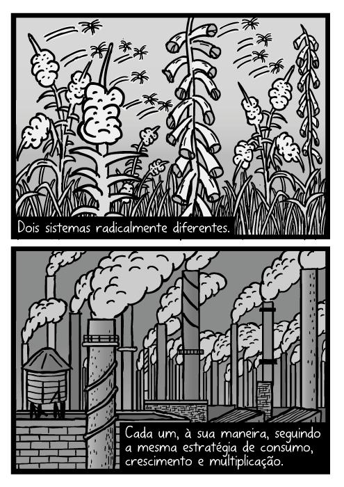 Cartum de semente de erva daninha. Desenho de sementes sendo levadas pelo vento. Fumaça de chaminés industriais. Dois sistemas radicalmente diferentes. Cada um, à sua maneira, seguindo a mesma estratégia de consumo, crescimento e multiplicação.