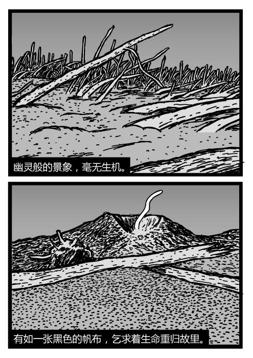 圣海伦斯山卡通。倒下的树干埋在火山灰中。狂风肆虐的死亡区。幽灵般的景象,毫无生机。有如一张黑色的帆布,乞求着生命重归故里。