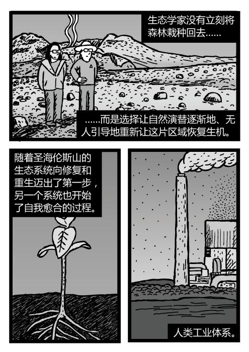 圣海伦斯山死亡区里的科学家。杂草发芽的图景。工厂烟囱的漫画。生态学家没有立刻将森林栽种回去……而是选择让自然演替逐渐地、无人引导地重新让这片区域恢复生机。随着圣海伦斯山的生态系统向修复和重生迈出了第一步,另一个系统也开始了自我愈合的过程。人类工业体系。