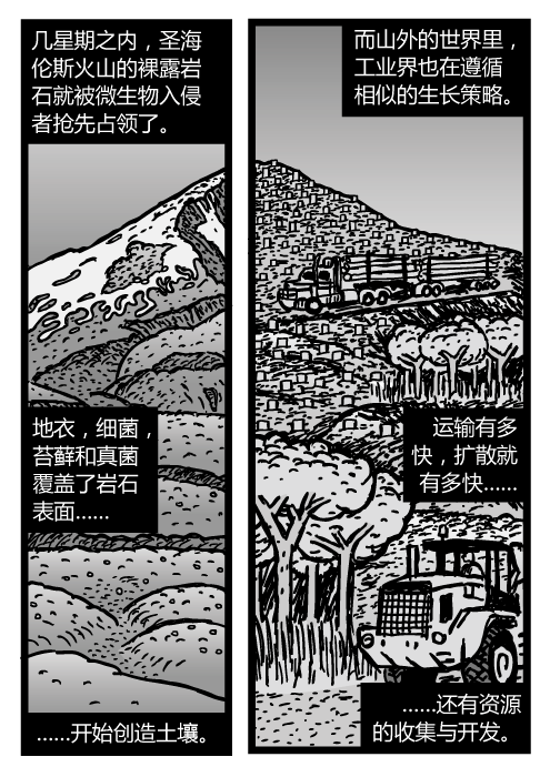 圣海伦斯山卡通。伐木卡车图片。几星期之内,圣海伦斯火山的裸露岩石就被微生物入侵者抢先占领了。地衣,细菌,苔藓和真菌覆盖了岩石表面……开始创造土壤。而山外的世界里,工业界也在遵循相似的生长策略。运输有多快,扩散就有多快……还有资源的收集与开发。
