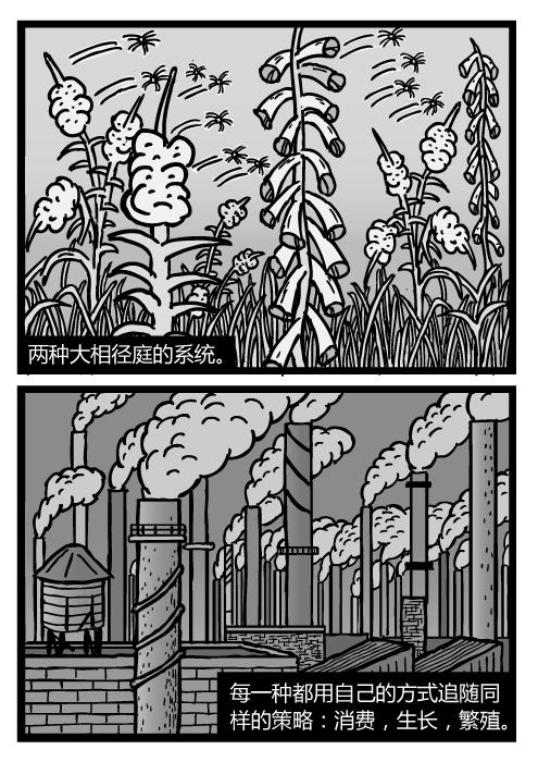 杂草种子卡通。柳兰(火生草)的种子随风飘散。工厂烟囱的黑烟。两种大相径庭的系统。每一种都用自己的方式追随同样的策略:消费,生长,繁殖。
