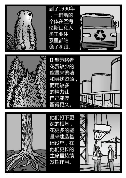 树和树根的卡通。工业建设的场景。到了1990年,一群新的个体在圣海伦斯山和人类工业体系里都站稳了脚跟。II型策略者花费较少的能量来繁殖和寻找资源,而用较多的精力让自己能停留得更久。他们打下更深的根基,花更多的能量来建造基础设施,在他们更长的生命里持续发挥作用。