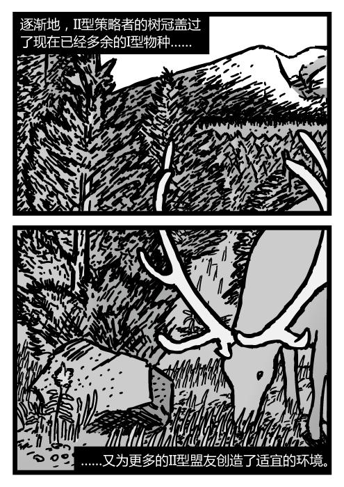 幼小松树的卡通。驼鹿吃草的图景。逐渐地,II型策略者的树冠盖过了现在已经多余的I型物种……又为更多的II型盟友创造了适宜的环境。