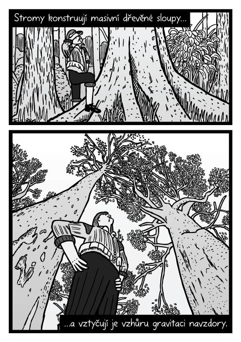 Kresba muže pod stromem zpodhledu. Komiks kmeny stromů. Stromy konstruují masivní dřevěné sloupy…a vztyčují je vzhůru gravitaci navzdory.