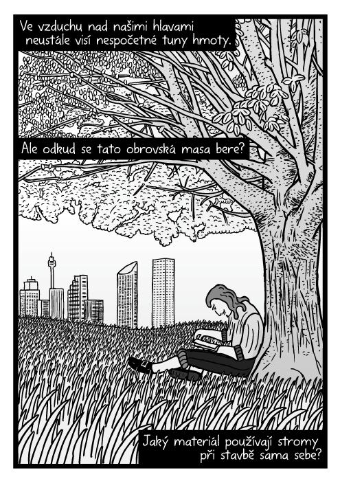 Muž čte knížku pod stromem komiks. Kresba louka tráva. Ve vzduchu nad našimi hlavami neustále visí nespočetné tuny hmoty. Ale odkud se tato obrovská masa bere? Jaký materiál používají stromy při stavbě sama sebe?