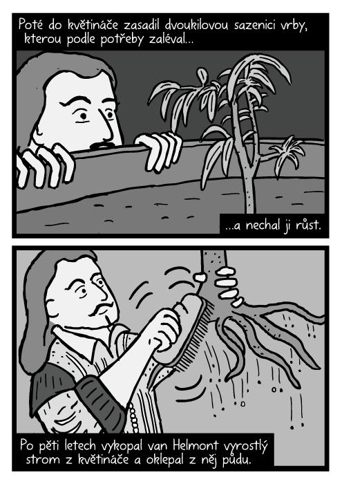 Jean Baptista van Helmont komiks. Očistit vrbu od půdy kresba. Poté do květináče zasadil dvoukilovou sazenici vrby, kterou podle potřeby zaléval…a nechal ji růst. Po pěti letech vykopal van Helmont vyrostlý strom z květináče a oklepal z něj půdu.