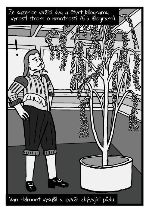 Jean Baptista van Helmont komiks. Van Helmont vrba kresba. Ze sazenice vážící dva a čtvrt kilogramu vyrostl strom o hmotnosti 76.5 kilogramů. Van Helmont vysušil a zvážil zbývající půdu.