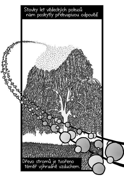Kresba stromu uhlík vodík kyslík atomy. Molekuly oxidu uhličitého. Stovky let vědeckých pokusů nám poskytly překvapivou odpověď: Dřevo stromů je tvořeno téměř výhradně vzduchem.