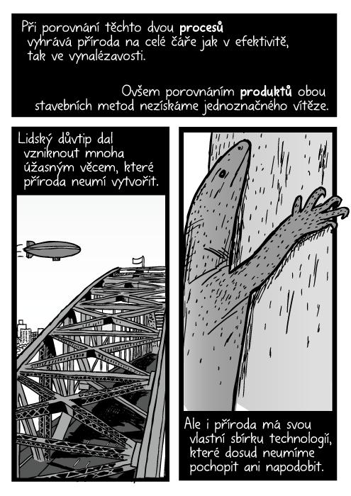 Komiks vzducholoď nad Sydney Harbour Bridge. Ještěr šplhající po stromu kresba. Při porovnání těchto dvou procesů vyhrává příroda na celé čáře jak vefektivitě, tak ve vynalézavosti. Ovšem porovnáním produktů obou stavebních metod nezískáme jednoznačného vítěze. Lidský důvtip dal vzniknout mnoha úžasným věcem, které příroda neumí vytvořit. Ale i příroda má svou vlastní sbírku technologií, které dosud neumíme pochopit ani napodobit.