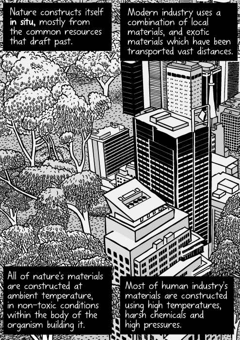 Urban nature cartoon. Skyscrapers next to bushland drawing.